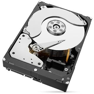 "6000GB Seagate BarraCuda ST6000DM004 256MB 3.5"" (8.9cm) SATA 6Gb/s"
